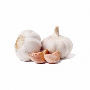 Garlic in Faisalabad