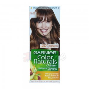 Garnier Hair Color Chocolate number 6.34